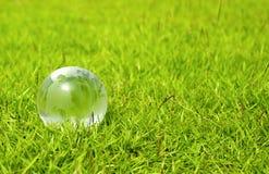Szklana kula ziemska na ładnej zielonej trawie Obrazy Stock