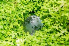Szklana kula ziemska w zielonej trawie Obraz Royalty Free