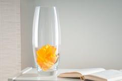 Szklana kwiat waza Obraz Stock
