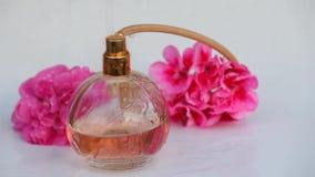 Szklana pachnidło butelki wody kropel menchii róża zdjęcie wideo