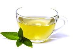 Szklana przejrzysta filiżanka z herbatą i zieleń nowym liściem Zdjęcia Royalty Free
