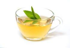Szklana przejrzysta filiżanka z herbatą i zieleń nowym liściem Obraz Stock