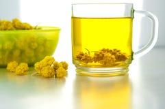 Szklana przejrzysta filiżanka ziołowa herbata Zdjęcie Royalty Free