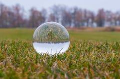 Szklana przejrzysta piłka na zielonej trawie i parku Obrazy Stock