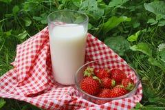 szklana trawy mleka truskawka Obraz Stock