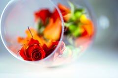 Szklana waza wypełniająca z czerwieni róży płatkami pojęcie aromatherapy Zdjęcia Stock