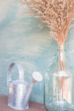 Szklana waza wysuszony kwiat i podlewanie Fotografia Stock