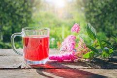 Szklana zlewka z zimnymi jagodowymi herbata stojakami na starej drewnianej powierzchni w ogródzie obrazy royalty free