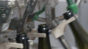 Szklane butelki na automatycznym konwejerze wykładają przy szampana lub wina fabryką Roślina dla butelkować alkoholicznych napoje zbiory wideo