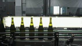 Szklane butelki na automatycznym konwejerze wykładają przy szampana lub wina fabryką Roślina dla butelkować alkoholicznych napoje zdjęcie wideo
