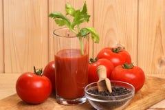 szklanego soku organicznie pomidor Fotografia Royalty Free