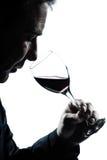 szklanej mężczyzna portreta czerwonej sylwetki target1996_0_ wino obraz royalty free