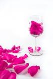 szklani płatki wzrastali Zdjęcie Royalty Free