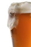 szklankę piwa Zdjęcie Royalty Free