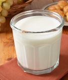 szklanki mleka Obraz Stock