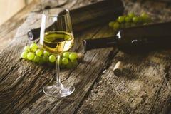 szklany białego wina Obraz Royalty Free