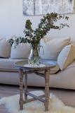 Szklany dzbanek z gałąź decoratory eukaliptus Fotografia Royalty Free