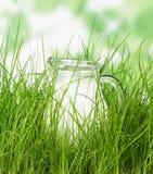 Szklany miotacz dojna pozycja na trawy zakończeniu up obrazy stock