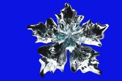 Szklany płatka śniegu kwiat Obraz Royalty Free