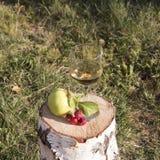 szklany plażowy lunchu wino Zdjęcia Royalty Free