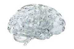 Szklany przejrzysty mózg, 3D rendering Zdjęcie Royalty Free