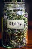 Szklany słój z dzikimi kwiatami i trawą, jak symbol surowy Ziemska planeta Symbol światowy środowisko Obrazy Royalty Free