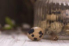 Szklany słój z przepiórek jajkami Zdjęcie Stock