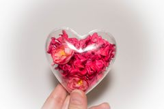 Szklany serce z czerwienią kwitnie inside w ręce na lekkim tle Obraz Stock
