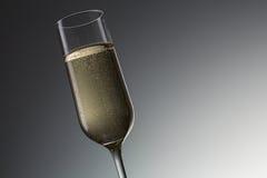 szklany szampania white izolacji zdjęcie royalty free