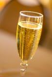 szklany szampania white izolacji Obrazy Stock