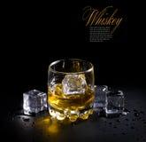 szklany whisky Obraz Royalty Free
