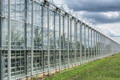 Szklarnia lub glasshouses dla narastających vetetables obrazy royalty free