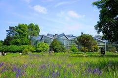 Szklarnia, oranżeria w parku, Frankfurt magistrala, Hessen Niemcy - jest - obrazy royalty free