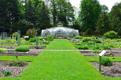 Szklarnia w obywatela ogródzie w Belgia Fotografia Royalty Free
