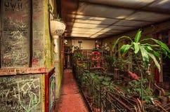 Szklarniany pub - Budapest Fotografia Stock