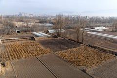 Szklarnie na rolniczy śródpolnym na zewnątrz miasta zdjęcie stock