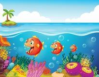 Szkoła ryba blisko raf koralowa royalty ilustracja