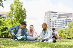 Szkoła wyższa przyjaciele studiuje podczas gdy używać laptop przy kampusem fotografia stock