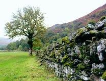 Szkocka ściana Obraz Royalty Free