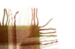 szkocka krata Obraz Stock