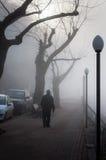 Szkocka mgła W kraju Turcja Fotografia Royalty Free