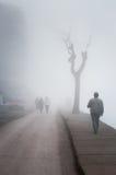 Szkocka mgła W kraju Turcja Zdjęcia Royalty Free