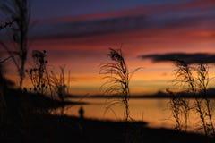 szkocka słońca Obrazy Stock