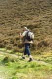 szkocka walker turystyczne wysoki Fotografia Royalty Free