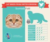Szkocki fałdu kota trakenu infographics royalty ilustracja