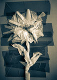 Szkocki kwiat Zdjęcia Stock