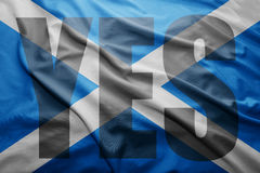 Szkocki niezależności referendum Obraz Royalty Free