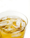 Szkocki słodowy whisky fotografia stock