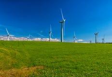 Szkocki wiatr Obrazy Stock