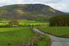 Szkocki wzgórze Obraz Royalty Free